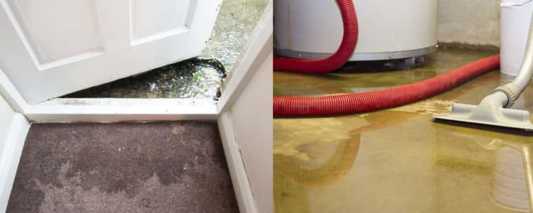 Best Flood Damage Restoration Preston