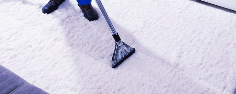 Professional End of Lease Carpet Cleaning Preston