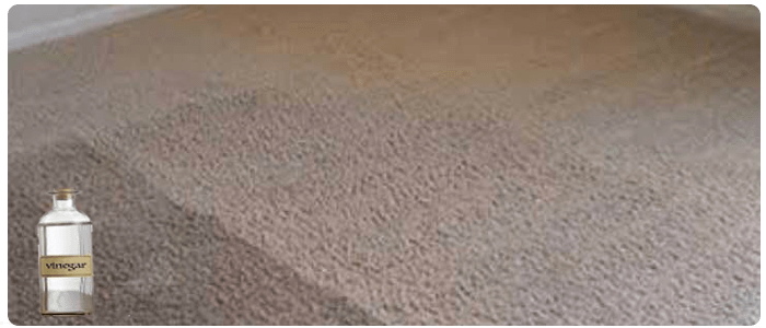 Cleaning The Carpet With Vinegar Cleaning Method
